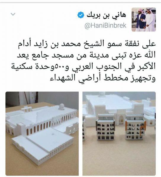 هام.. حقيقة مشروع هاني بن بريك في عدن
