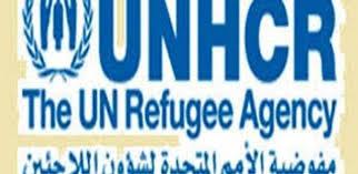 المفوضية السامية لشؤون اللاجئين تدين مقتل 20 مدنيا بغارة للتحالف غرب تعز