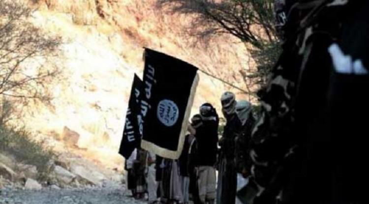 قوات الامن تعتقل قيادي في تنظيم القاعدة بمحافظة ابين