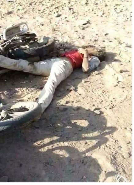 صحيفة خليجية: خبراء تصنيع صواريخ ووزراء قتلوا مع الصّماد