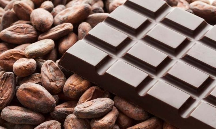 تعرف على خصائص الشوكولاتة وتأثيرها على صحتك.. معلومات مثيرة