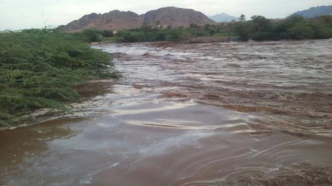 السيول تجرف مساحات زراعية واسعة في وادي زبيد محافظة الحديدة