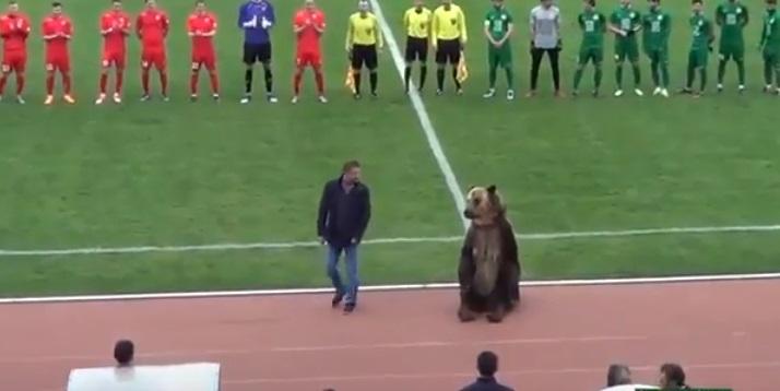مشهد اثار الدهشة.. دب يعطي اشارة البداية في احدى مباريات الدوري الروسي