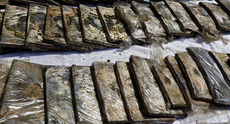 الجوف.. ضبط كمية كبيرة من الحشيش المخدر كانت في طريقها للحوثيين