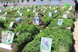 """مليشيات الحوثي تحاول الاستيلاء على أرضية الخطوط اليمنية لتحويلها الى """"مقبرة"""""""