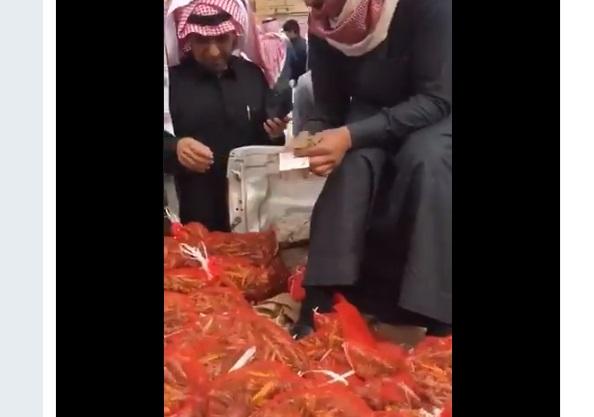 """بعد اقبال كبير من اليمنيين على شرائها.. السلطات السعودية تمنع بيع """"الجراد"""" لهذا السبب!"""