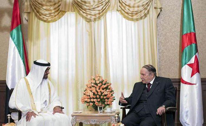ضمن سلسلة وأدها للثورات العربية.. تحقيق خطير يفضح دور الإمارات التخريبي في أحداث الجزائر