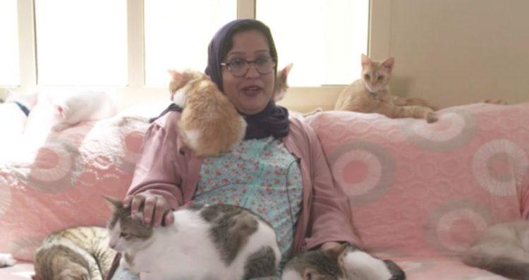 تنفق عليها ميزانية مالية ضخمة.. إماراتية تؤوي 100 قطة مشردة في منزلها