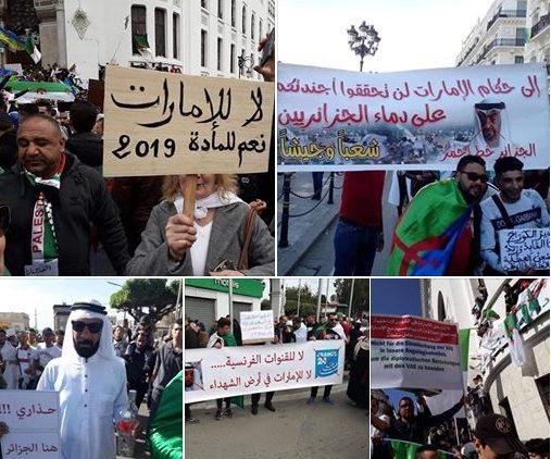 """ثوار الجزائر يرفعون """"الكرت الأحمر"""" بوجه الإمارات"""