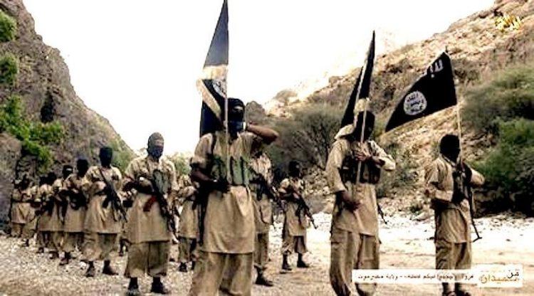 تقرير أمريكي: الإمارات تدعم تنظيم القاعدة في اليمن لزيادة هيمنتها على الجنوب (ترجمة خاصة)