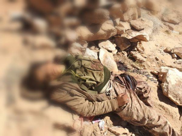 بالاسماء.. جبهات نهم والجوف تحصد أكثر من 800 عنصر من مليشيات الحوثي خلال 25 يوماً